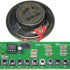 FK274 13 Note Key Electronic Organ