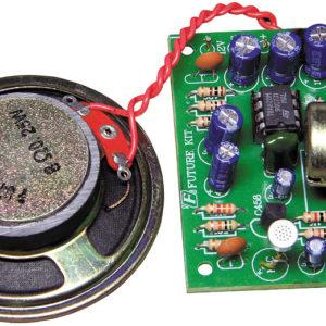FK672 2 Watt Mono Amplifier With Speaker