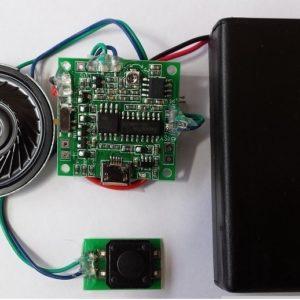 KSSM 300S 5 minute USB Player Module